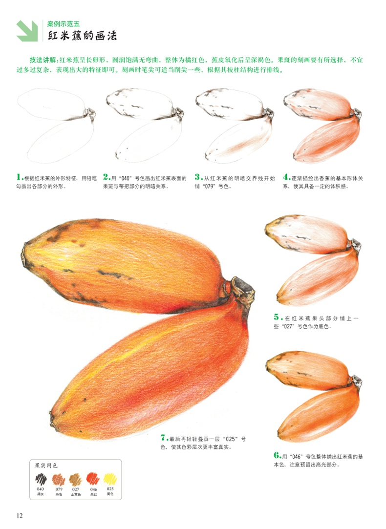 4册 彩色铅笔画 花草水果美食动物手绘画彩铅画入门教程书 素描绘画