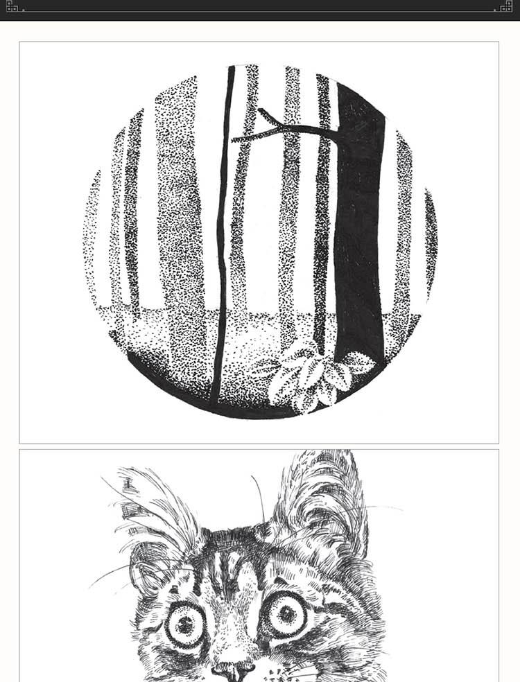 黑白创意装饰图案绘制宝典手绘插画基础入门教程 爱林文化 点线面黑白