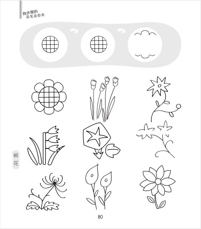 有步骤的简笔画图典简单学画动物人物风景植物成人儿童分步绘画
