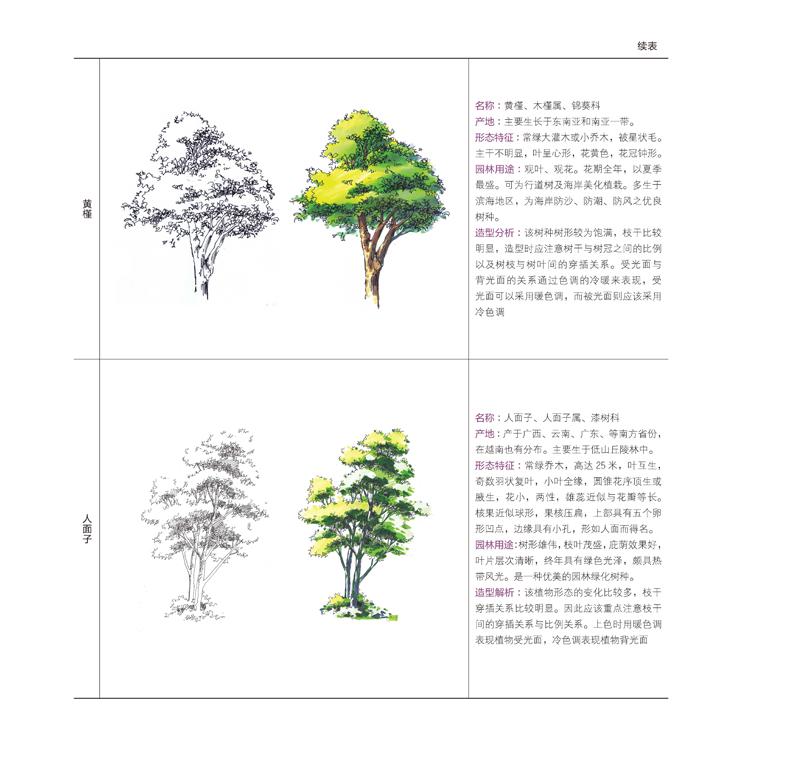 fun书 园林景观植物手绘技法资料集  第一章概述 001第一节植物配置