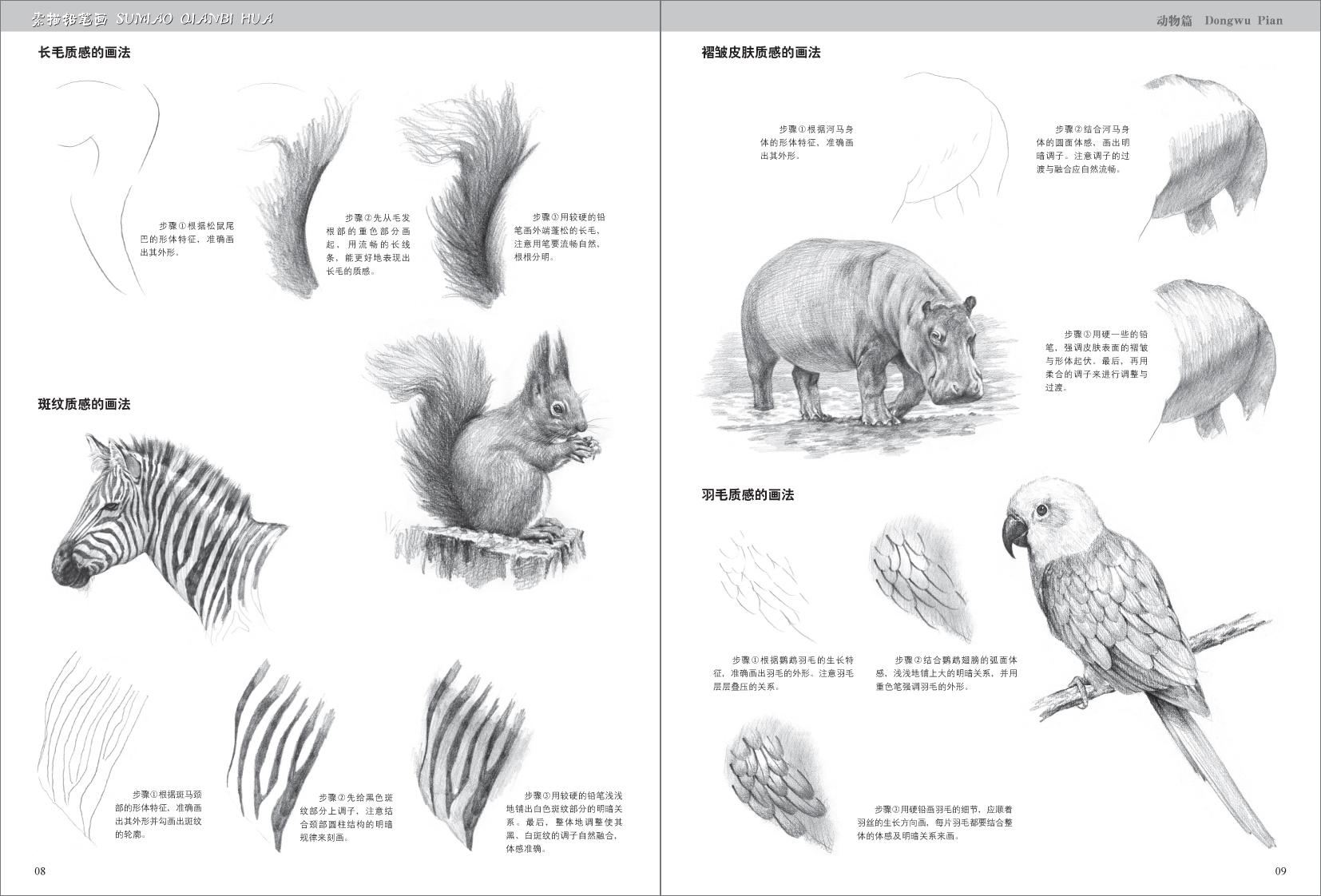 无论是凶猛的森林走兽,还是柔弱的家养宠物,又或是遨游天空的鸟类,在朴素又神奇的铅笔下,它们都变成一幅幅生动有爱的画面。本书对这些形形色色的动物进行了拟人化表现,不但总结了绘画重点,还穿插了细节绘制要点,让你感受到素描别样的乐趣。