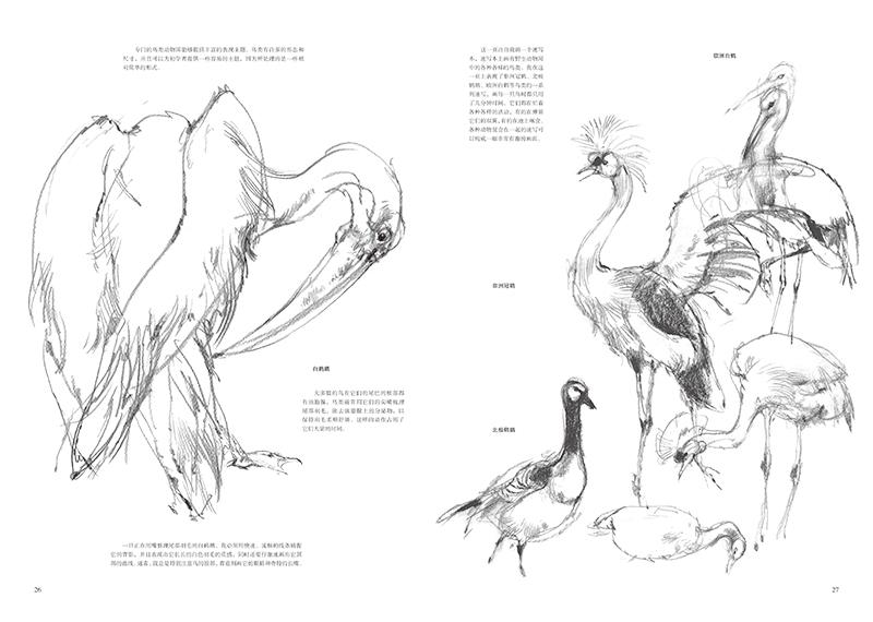 《怎样画动物素描 安布鲁斯 9787558009624》 【简介